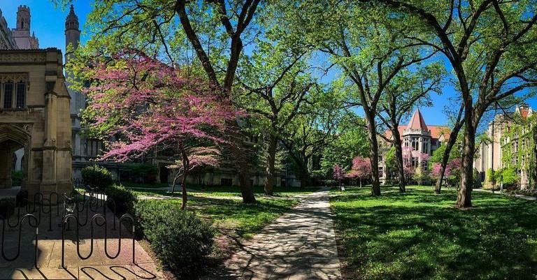 The University of Chicago_052921C